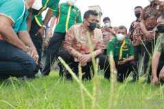Pemerintah kota Medan mulai rawat Stadion Teladan